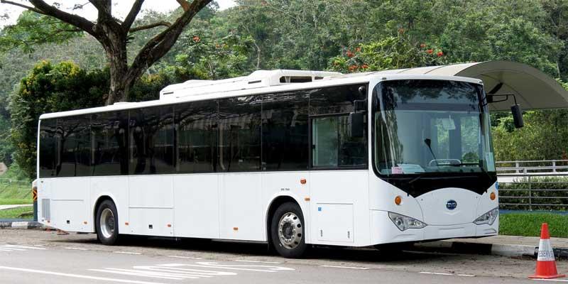 autobús blanco de BYD